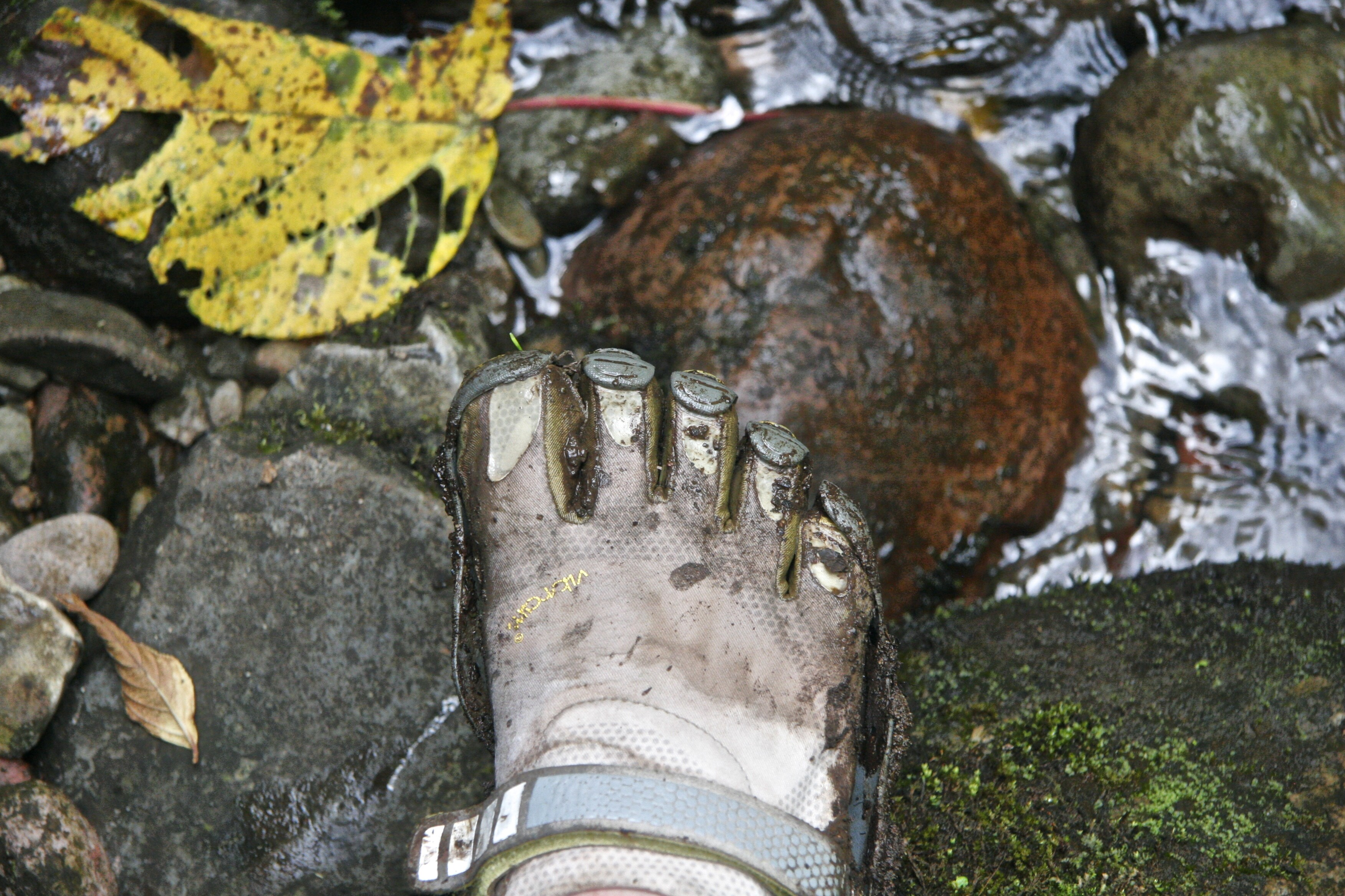 A muddy foot ready to step