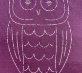 closeup image of Think Possible Apparel's wise owl quotes design screen printed on a maroon shirt