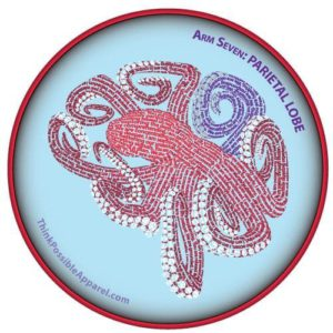 Highlighting Arm 7 of the Octopus Brain Pose Design